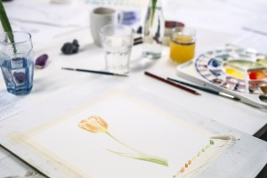 Botanical Art Workshop with Jessie Rose Ford at Byron Community Centre